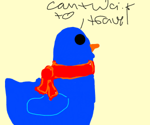 Bird with scarf travelling