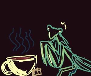 Praying Mantis and Tea