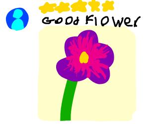 5 Star Flower
