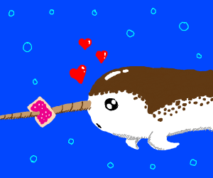a narwhal love at first sight with poptart