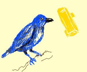 Blue bird staring at a golden thing...