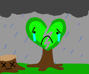 heart-broken tree in the rain