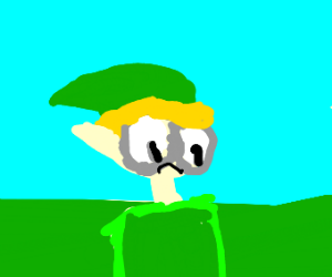 Link is sh00k
