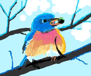 Bird eats Berry