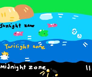 sunlight, twilight, and midnight zones of sea