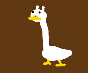 giraffe duck hybrid but mostly duck