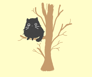cat chilling on a tree branch :)