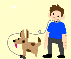 Dog walking a man on a leash