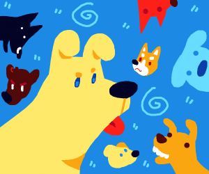 lots of dogs!