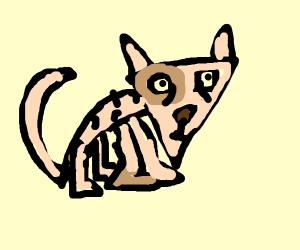Triangle Sphynx