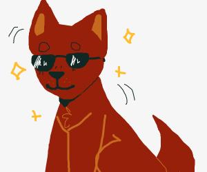 a stylish doggo
