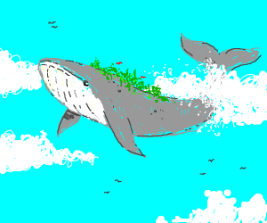flying sky whale