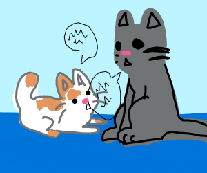 Cat talking to a kitty
