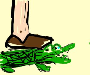 Step on aligator