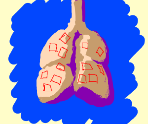 I have squares inside my lungs
