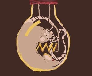 rat in a lightbulb