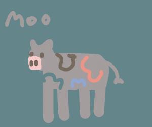 multi color cow