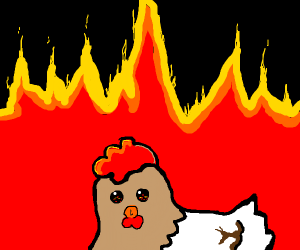 Chicken Arsonist