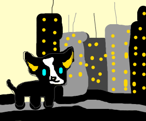 A dog in a city