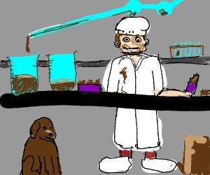 Chocolate lab
