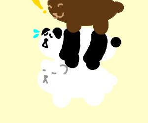 We bare bears
