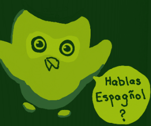 Duo the owl asking if you learned Spanish
