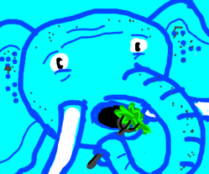 Elephant eating lettuce with a fork