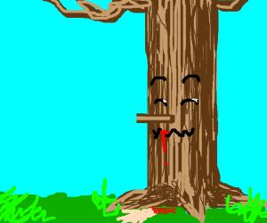 man eater tree