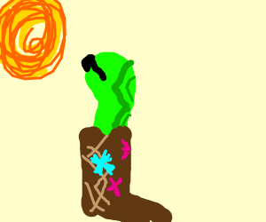 A snake in a boot staring at the sun