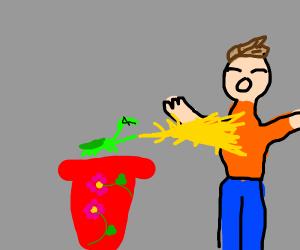 Mantis in a flower pot strikes a dude