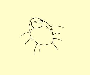 frisk spider