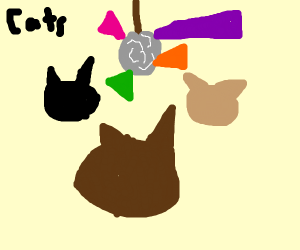 cats at a party