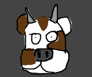 cow stares into your soul