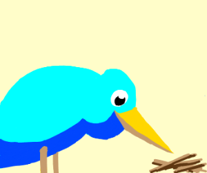 light blue bird looks at sticks