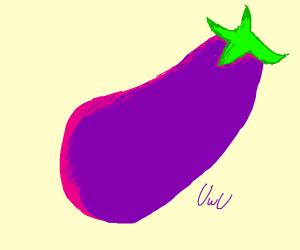 An Eggplant