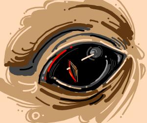 edgy eye