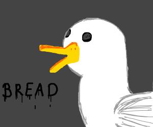 Duck wants B r e a d