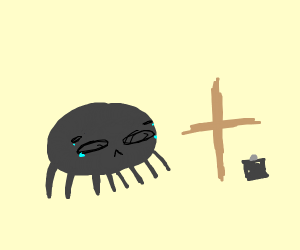 a spider crying about a cross and broken thin