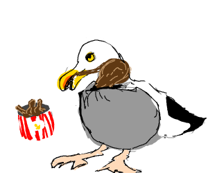 Fat seagul eating chicken