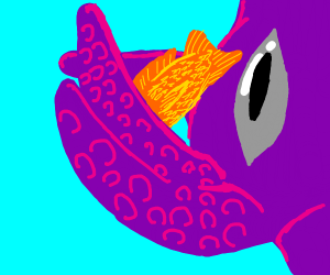 Purple octopus sneak attacks goldfish
