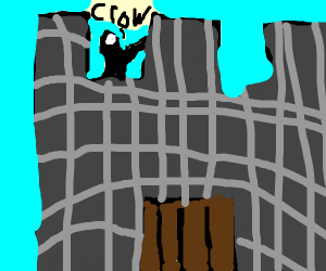 Crow in a Castle