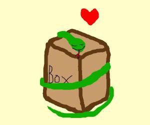 Snake looooves box