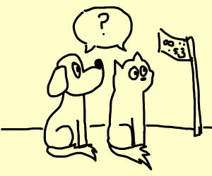 Dog and cat looking at symbols on flag