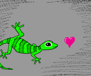 Gecko chases little heart