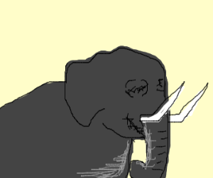 elephant with no eyes... or mouth