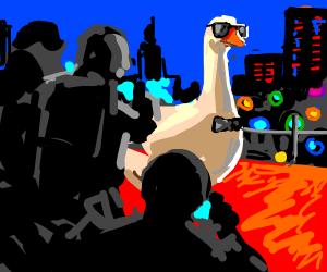 VIP goose