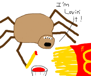 Spider likes fries