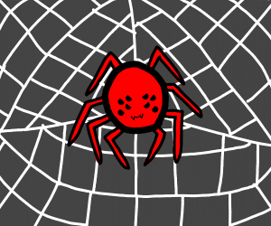 Black/red spider in its web