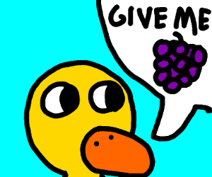 GIVE ME THE GRAPES. QUACK