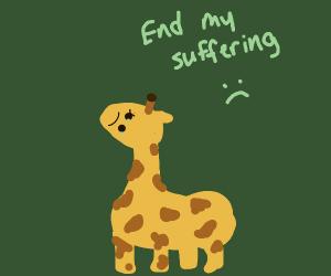 short giraffe wants you to end it's suffering